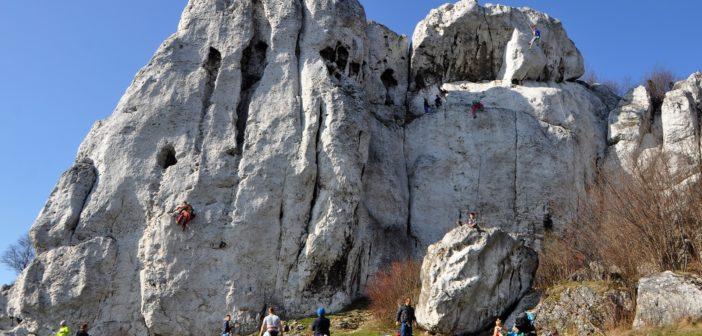 Płock się wspinał – podsumowanie skalnego sezonu 2018